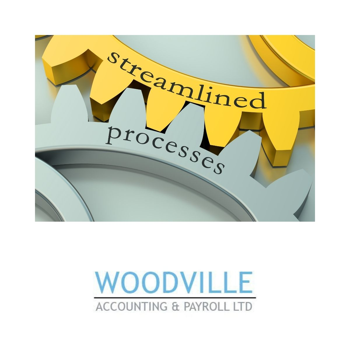 Qualified Accountants